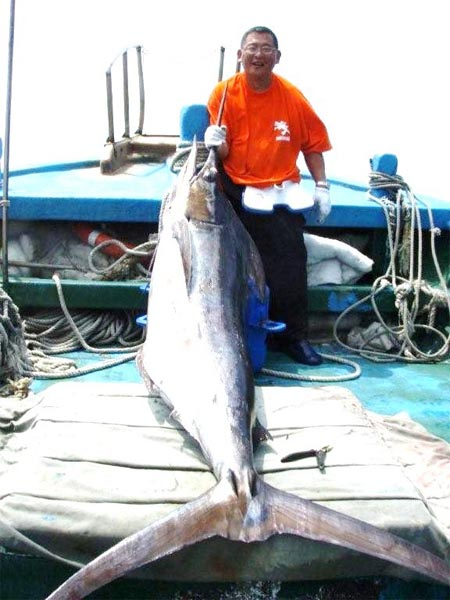 Online japan fishing tackle shop plat for Online fishing store
