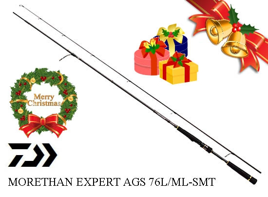 XmasSale DAIWA MORETHAN EXPERT AGS 76L/ML-SMT (SPIN MODEL)image