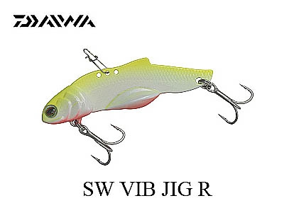 15 SW VIB JIG R 60g-Chart Backimage