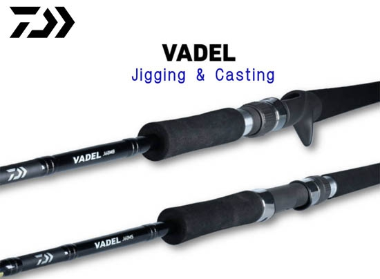 VADEL J60MB・Y (Free shipping) (2019 Sep debut)image