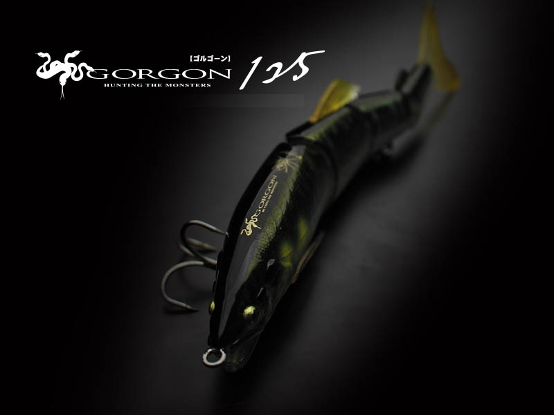 LITTLE JACK 2019 GORGON-125 #09_Image2