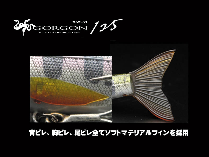 LITTLE JACK 2019 GORGON-125 #09_Image3