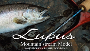 Lupus Mountain Stream