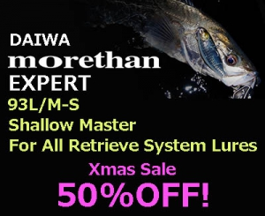 50%OFF! DAIWA MORETHAN EXPERT AGS 93L/M-S