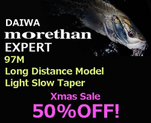 50%OFF! DAIWA MORETHAN EXPERT AGS 97M