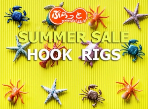 2019 Summer sale Hook & ring etc