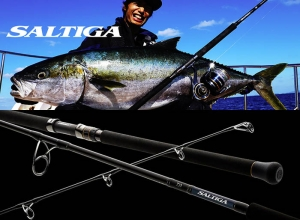 2020 DAIWA SALTIGA AIR PORTABLE