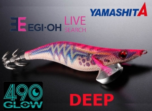 2020 EGI OH LIVE SEARCH DEEP 490
