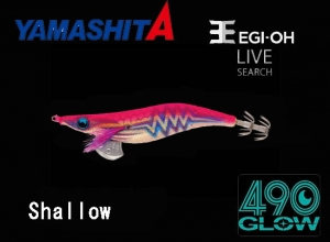 2020 EGI OH LIVE SEARCH SHALLOW