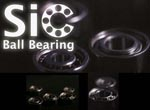 ZPI SiC Ball Bearings