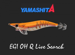 EGI OH Q LIVE SEARCH
