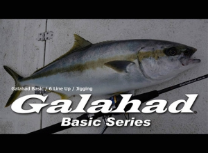 Galahad Jigging Basic