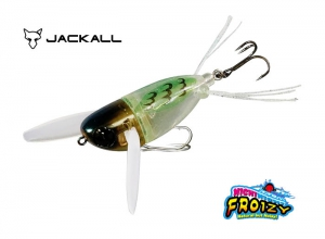 Summer Sale JACKALL NICHINICHI FROIZY Color #5