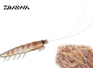 DAIWA REAL KRILL WORM / M Fresh