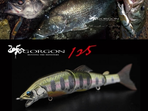 LITTLE JACK 2019 GORGON-125 #03