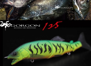 LITTLE JACK 2019 GORGON-125 #08