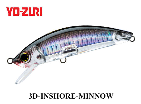 3D INSHORE MINNOW 110mm C4