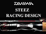 STEEZ RACING DESIGN